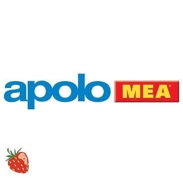Apolo MEA Stand WC-Befestigung WC weiß, chrom 9BFWC