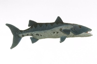 Baby Barracuda Fish Barracuda Fish 10 Plush