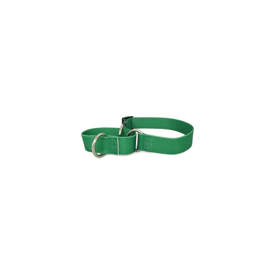 Solid Kelly Green Martingale Dog Collar  Pet Leash Collar And Harness Supplies