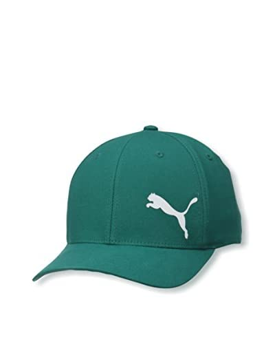 Puma Men's Teamsport Formation X-Fit Hat