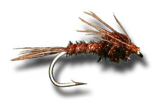 Pheasant Tail Nymph Fly Fishing Fly by Fly Shack