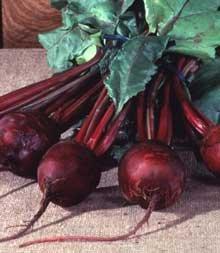 Beet Detroit Dark Red Great Heirloom Vegetable 300 Seeds