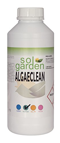 1lt-anti-algae-for-swimming-pool-maintenance-treatment-kills-algae-algaecide-1-l