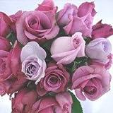 むらさき系のバラの花束 30本 グリーン付き【生花】【お祝い】記念日】【誕生日】【フラワーギフト】【バラ】