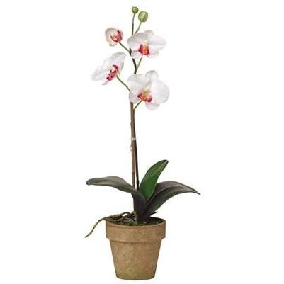 Nearly Natural 4065-WH Potted Phalaenopsis Silk Orchid Plant White