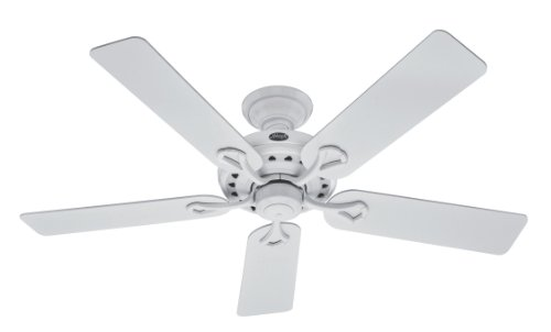 Hunter 20516 52-Inch Savoy 5-Blade Ceiling Fan, with White/Light Oak Blades