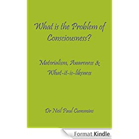 What is the Problem of Consciousness?: Materialism, Awareness & What-it-is-likeness