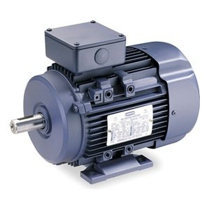 Premium Efficiency Metric Motor, Df100L