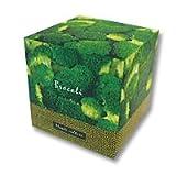 ブロッコリーを育てる栽培キット!Plante Culture(プラント キュルチュア) ブロッコリー栽培セット