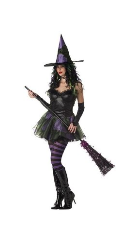 Wicked Witch of the West Costume - Adult Rebel Toons Costume deluxe