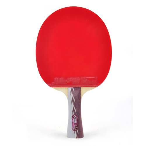 Review DHS Table Tennis Racket #A4002, Ping Pong Paddle, Table Tennis Racquets - Shakehand