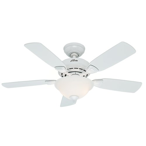 Hunter Fan Company 52080 Caraway 44-Inch Snow White Ceiling Fan with Five Snow White Blades and a Light Kit