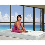 Buy Bargain Spa Sensations 6'' Tight Top Spring Mattress -Twin