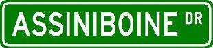 ASSINIBOINE Street Sign ~ Custom Street Sign – Aluminum – 4 x 18 inches