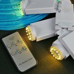 Battery Lantern Lights & Remote, 12 Leds, Dimmer, Warm White, Set Of 12