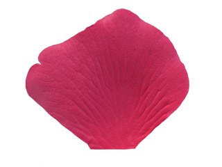 1000 Wedding Silk Rose Petals Guava Deep Pink