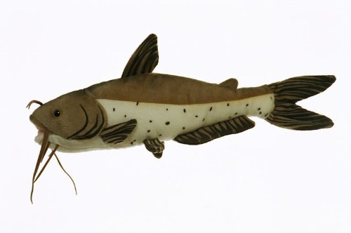 "10"" Channel Catfish Fish Plush Stuffed Animal Toy"