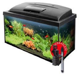 axolotl die kleinen wassermonster. Black Bedroom Furniture Sets. Home Design Ideas