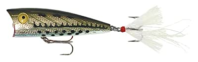 Rebel Lures Pop-r Fishing Lure by Rebel Lures