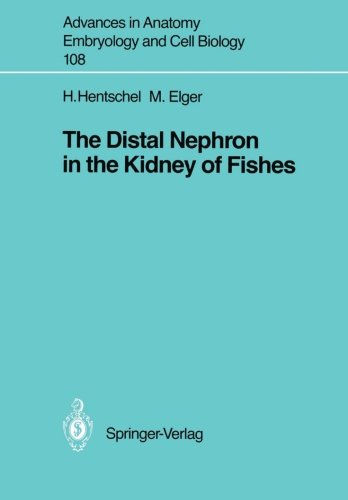 The Distal Nephron In The Kidney Of Fishes (Advances In Anatomy, Embryology And Cell Biology)