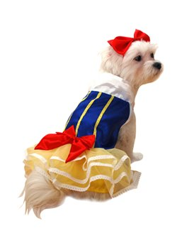 Snow Princess Pet Costume