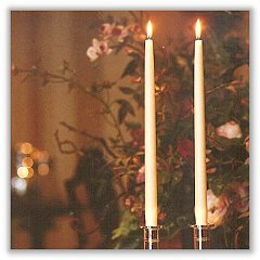 NEW Elegant Ivory Taper Candles 12 Inch Tall Burn 8 Hours Set of 12 Made in USA