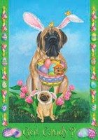 Got Candy? - Large Easter Standard 28 Inch X 40 Inch Decorative Flag