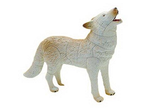 4D Toy stéréo dinosaure assemblé oeufs faune arctique - Arctic Loup