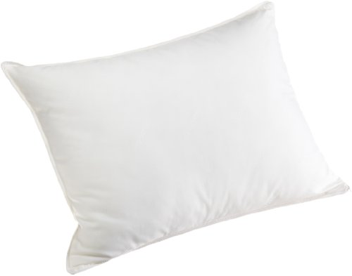 Carpenter Beyond Perfect Synthetic Down and Visco Pillow