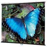 Draper V Screen Manual Projection Screen - 70