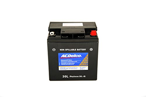 Acdelco Atx30Lbs Specialty Powersports Agm Jis 30Cl-B-Bs Battery