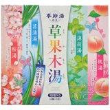 アース 季節湯 草果木湯 12包