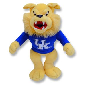 Kentucky Wildcats 10