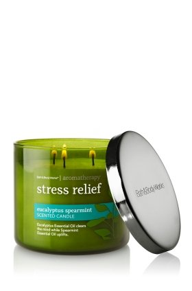 Bath and Body Works Aromatherapy Eucalyptus Spearmint Scented Candle 14.5 Oz