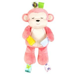 Taggies Tag Huggable Soother Pal Plush Toy, Pink front-581348