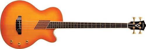 Washburn Acoustic/Electric Series AB40VSK Acoustic-Electric Bass