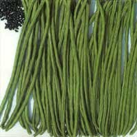 Amazon.com : Lata Yard-long beans seed packet : Chinese Long Bean