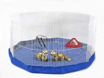 Ideal Pet Products Aluminum Fast Fi…