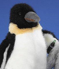 Boyds Coca-cola Penguin 12
