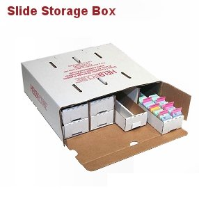 Microscope Slide Storage Box, Unassembled, Case/10