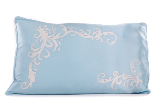 Texeresilk Silk Pillowcase Pillow Cover Case Colorful Decorative Pillowcase For Hair & Skin Single Pack Queen / Standard Size Hs0002-Aqm-Q