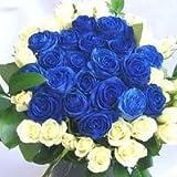 青いバラと白いバラのブーケボレロ 40本 【生花】【お祝い・記念日・誕生日・フラワーギフト・バラ】