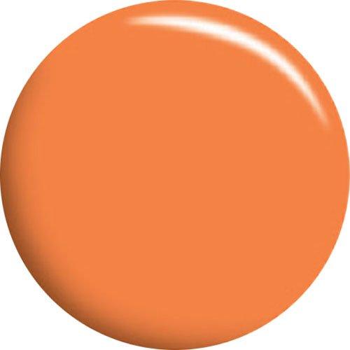 カルジェル ペイルオレンジ 4g CGA32S 正規代理店品