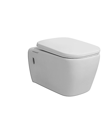 Sestones Febe Wall Hung Water Closet (Size 530X360X350 Mm )