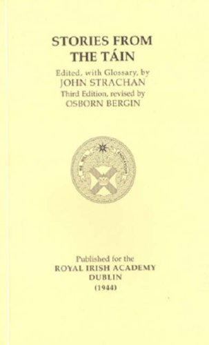 Stories from the Tain (Irish Studies)