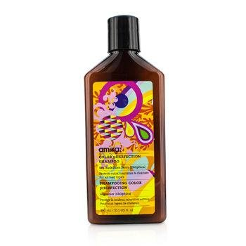 amika-color-pherfection-shampoo-for-all-hair-types-300ml