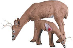 Rinehart® Broadhead Buck Target