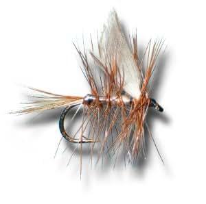 Beaverkill fly fishing fly dry fishing for Amazon fly fishing