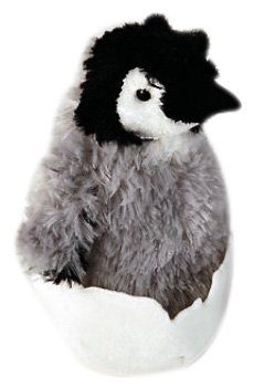 Penguin Chick - 1