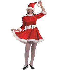 Mrs. Claus Snow Princess Velour Christmas Costume Dress Size 12-14 Large